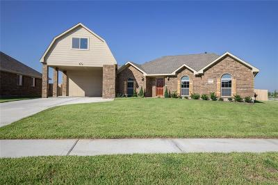Galveston County Single Family Home For Sale: 6317 Huron Street