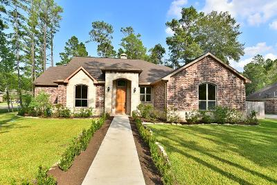 Magnolia Single Family Home For Sale: 1022 McDaniel Drive