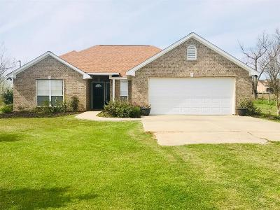 Sealy Single Family Home For Sale: 496 Schmidt Road