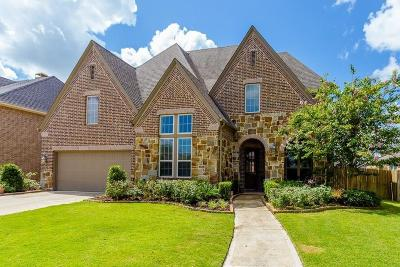 Sugar Land Single Family Home For Sale: 4223 S Shadow Mist Lane Lane