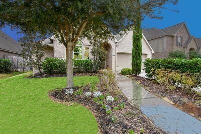 Missouri City Single Family Home For Sale: 35 Bear Grove Drive