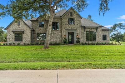 Fulshear Single Family Home For Sale: 32807 Whistler Court