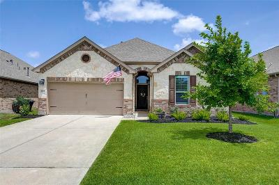 League City Single Family Home For Sale: 1612 Cintola Lane