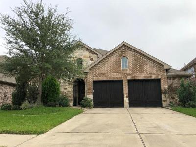 Richmond TX Single Family Home For Sale: $350,000