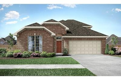 Missouri City Single Family Home For Sale: 2319 Dianna Lee Drive