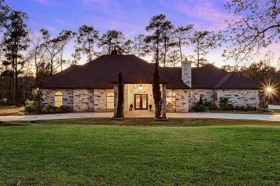 Montgomery Single Family Home For Sale: 112 Ebner Lake Front Drive