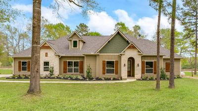Conroe Single Family Home For Sale: 11261 Triple Crown Way