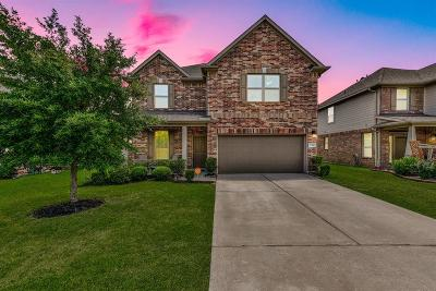 Pearland Single Family Home For Sale: 1308 Ainsley Way Drive