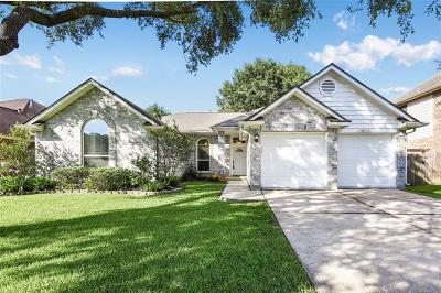 Friendswood Single Family Home For Sale: 16111 Blue Mesa Ridge Drive