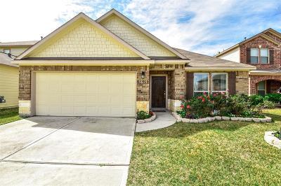 Katy Single Family Home For Sale: 5615 Casa Martin Drive