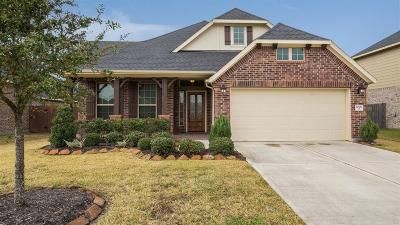 Pearland Single Family Home For Sale: 2006 Scissor Tail Road