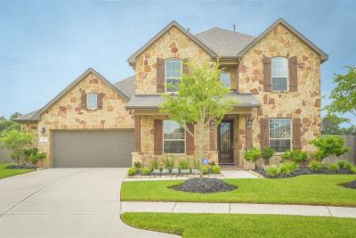 Tomball Single Family Home For Sale: 17907 Rushing Hollow Court