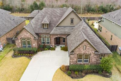 Friendswood Single Family Home For Sale: 1044 Bolivar Point Lane