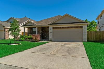 Tomball Single Family Home For Sale: 12803 Pine Meadows Street