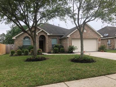 League City Single Family Home For Sale: 849 Crystal Bay Lane