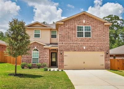 Conroe Single Family Home For Sale: 7637 Dragon Pearls Lane