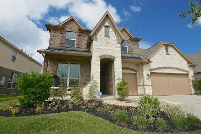 Tomball Single Family Home For Sale: 9426 Brannok Lane