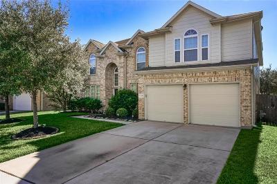Pearland Single Family Home For Sale: 13208 Hampton Bay Drive