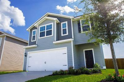 Single Family Home For Sale: 26039 Allan Poe Drive