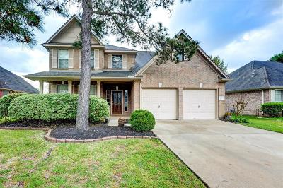 Pearland Single Family Home For Sale: 2513 Piney Woods Drive