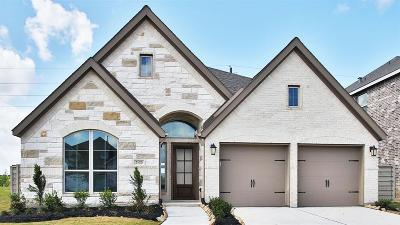 Manvel Single Family Home For Sale: 2123 Blackhawk Ridge Lane