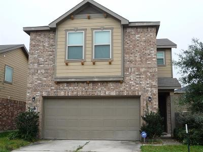 Houston Single Family Home For Sale: 2507 Skyview Point Drive