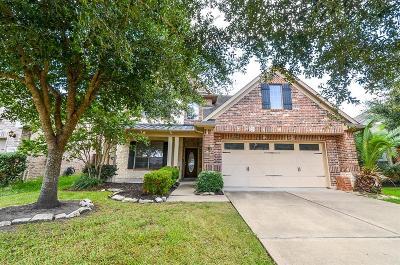 Richmond TX Single Family Home For Sale: $265,000