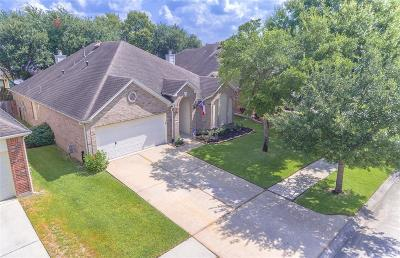 Spring Single Family Home For Sale: 3523 Cactus Creek Drive