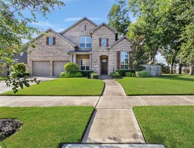 Sugar Land Single Family Home For Sale: 4011 Birch Vale Lane