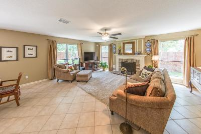 League City Single Family Home For Sale: 2102 Castle Beach Court