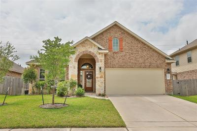 Tomball Single Family Home For Sale: 22927 Banff Brook Way