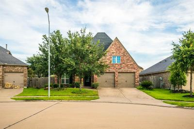 Katy Single Family Home For Sale: 29011 Erica Lee Court