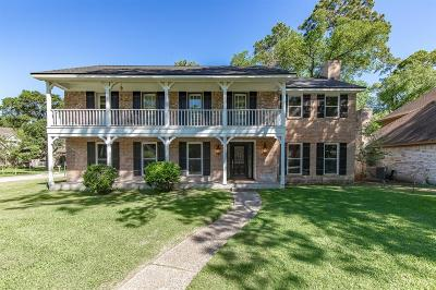 Houston Single Family Home For Sale: 1010 Maranon Lane