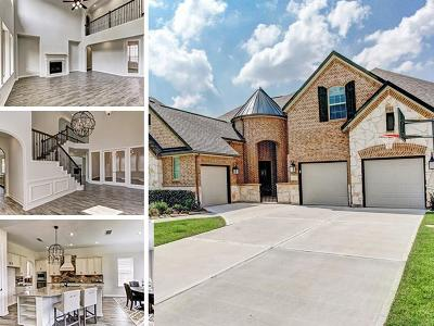 Porter Single Family Home For Sale: 5827 Vineyard Creek Lane