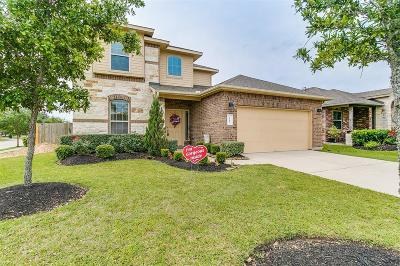 Dickinson Single Family Home For Sale: 3203 Featherwood Lane