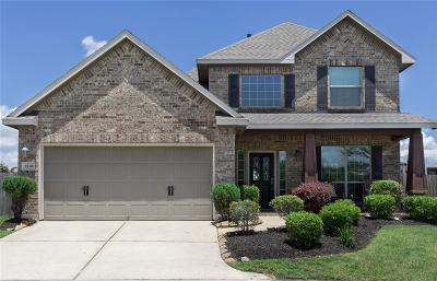 Friendswood Single Family Home For Sale: 3516 Arezzo Circle