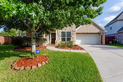 Houston Single Family Home For Sale: 12722 Orchid Trail
