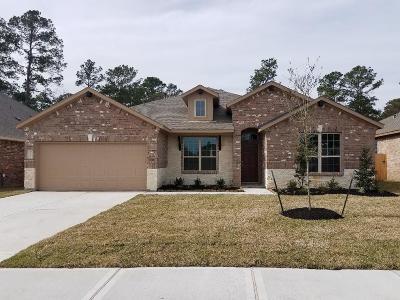 Houston Single Family Home For Sale: 18131 Humber River Lane