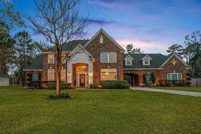 Spring Single Family Home For Sale: 2302 Legends Shore Drive