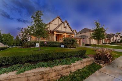Conroe Single Family Home For Sale: 46 Chestnut Meadow