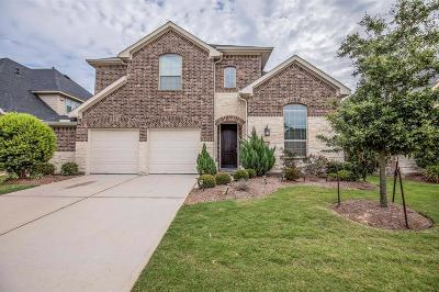 Conroe Single Family Home For Sale: 8143 Laughing Falcon Trail