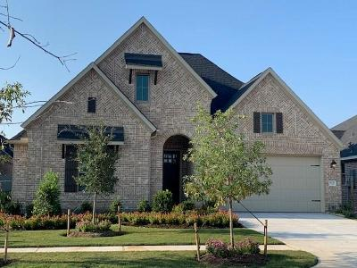 Conroe Single Family Home For Sale: 9931 Papyrus Rush Court