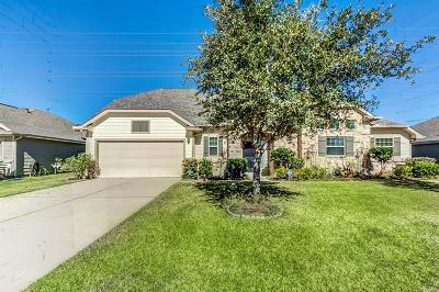 Tomball Single Family Home For Sale: 11318 Crestbrook Park Lane
