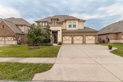 League City Single Family Home For Sale: 2985 Austin Breeze Lane
