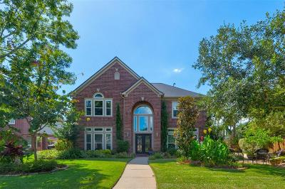 Friendswood Single Family Home For Sale: 706 Post Oak Court