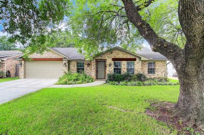 Houston Single Family Home For Sale: 14038 Saint Marys Lane