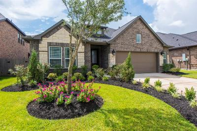 Pearland Single Family Home For Sale: 2993 Vintage Park Lane