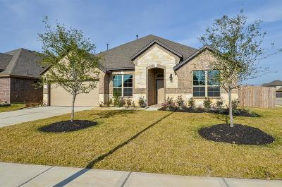 Katy Single Family Home For Sale: 28902 Endeavor River Drive