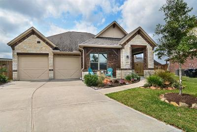 Tomball Single Family Home For Sale: 22307 Hillington Court
