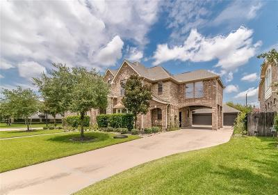 Houston Single Family Home For Sale: 17218 Country Brook Lane